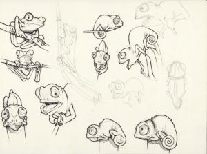 Différents croquis réaliser au stylo noir sur papier 2011 représentant des caméléons