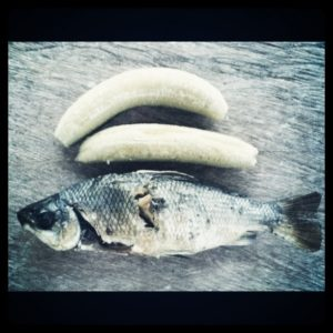 Photo of the diet meal of the artist Teddy Ros, a fish and two green plantains