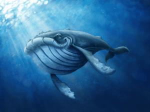 """digital painting """"Baleine-1"""" 2017 digital painting photoshop de l'artiste Teddy Ros représentant une baleine dans l'océan"""