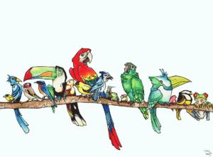 """Dessin de Teddy Ros """"Brochette d'oiseaux"""" 2011, Stylo noir, aquarelle sur papier, 29,7 x 21 cm - vendu représentant une brochette d'oiseau sur une branche d'un arbre"""
