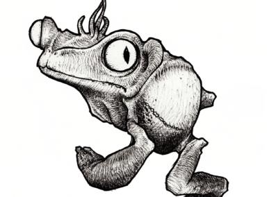 """Dessin de Teddy Ros """"Kambo"""" 2008 stylo noir sur papier 12 x 12 cm représentant la grenouille phyllomedusa bicolor"""