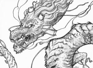 """Dessin """"Dragon-1"""" 2017 stylo noir sur papier 29,7 x 21 cm de Teddy Ros représentant un dragon très détailler"""
