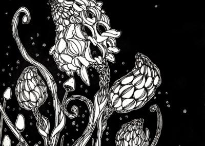 """dessin """"pousse-d'ozzy"""" 2008 stylo noir sur papier 21 x 14,8 cm de Teddy Ros représentant des plantes sur fond noir"""