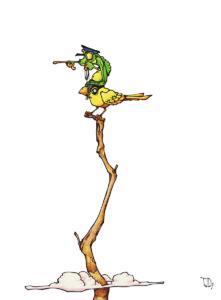 """dessin de teddy Ros """"vol d'oiseau Ayahuma"""" 2011, stylo noir et aquarelle sur papier, 29,7 x 21 cm représentant une grenouille sur un oiseau percher sur une branche d'arbre"""