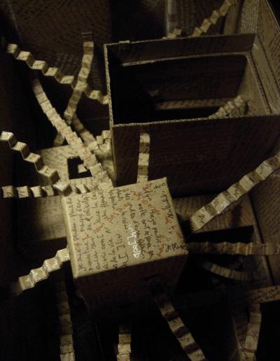 """""""Mise en boite de la pensée-7"""" 2007"""