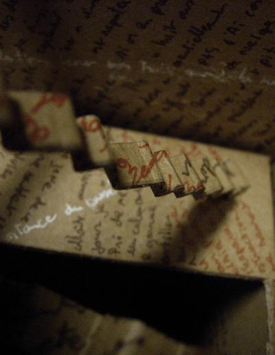 """""""Mise en boite de la pensée-2"""" 2007"""