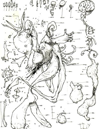 """Dessin """"DéformatiOn"""" 2007, stylo noir sur papier, 19 x 15 cm de Teddy Ros représentant une étude scientifique d'un montre avec tous ses organes"""