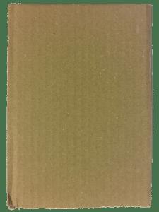 carton taché pour texte sur la partie dark side du site web de Teddy Ros